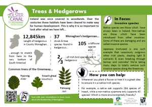 info trees and hedgerows