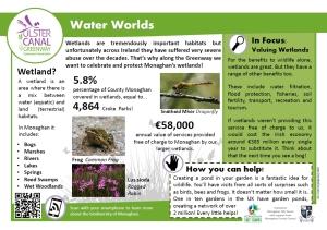 info waterworlds